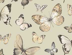 Обои Butterflies Chelsea Lane Collection JB60308